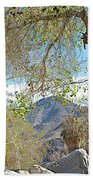 Trailhead Area In Andreas Canyon In Indian Canyons-ca Bath Towel