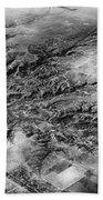 Tree Aerial Landscape V2 Bath Towel