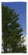 Tree Against A Cloudy Blue Sky In Vermont Bath Towel