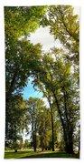 Tree Arches At Clackamette Park Bath Towel