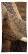 Tree Hugging Elephant Bath Towel