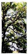 Tree In Blue Ridge Mountains Bath Towel