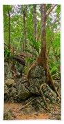 Tree Roots On Rock Bath Towel