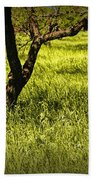 Tree Trunks In A Peach Orchard Bath Towel