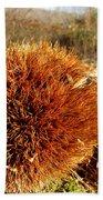 Tree Urchin Bath Towel