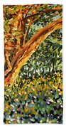 Trees At Sunset In Lafayette Park Bath Towel