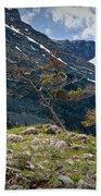 Trees On Top Of A Ridge At Glacier National Park Bath Towel