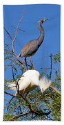 Tricolored Heron And Snowy Egret Bath Towel
