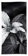 Trillium - Black And White Hand Towel