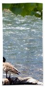 Truckee River Visitor Bath Towel