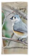 Tufted Titmouse - Baeolophus Bicolor Bath Towel