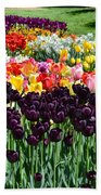 Tulip Field 1 Bath Towel