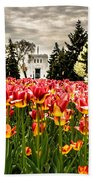 Tulips And Building Bath Towel