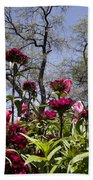 Tulips At Dallas Arboretum V35 Bath Towel