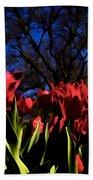 Tulips At Dallas Arboretum V63 Bath Towel