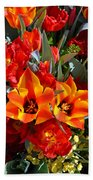 Tulips At The Pier Bath Towel