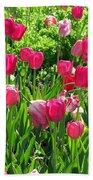 Tulips - Field With Love 54 Bath Towel