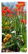 Tulips - Field With Love 64 Bath Towel