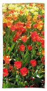 Tulips - Field With Love 68 Bath Towel