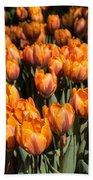 Tulips Galore  Bath Towel