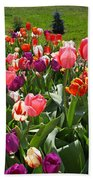 Tulips Garden Art Prints Colorful Spring Floral Bath Towel
