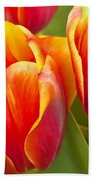 Tulips Red And Yellow Bath Towel