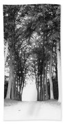 Tunnel Of Trees Bath Towel