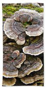 Turkey Tail Bracket Fungi -  Trametes Versicolor Bath Towel