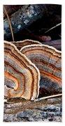 Turkey Tail Fungi In Autumn Bath Towel