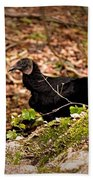 Turkey Vulture Bath Towel