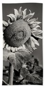 Turkish Sunflower 3 Bath Towel