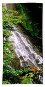 Twin Falls Creek Mount Rainier Bath Towel