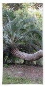 Twisted Palm Bath Towel