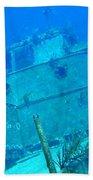 Two Blue Tang On A Ship Wreak Bath Towel