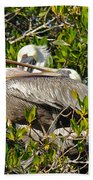 Two Brown Pelicans Bath Towel