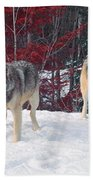 Two Gray Wolves Bath Towel
