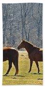 Two Horses Bath Towel