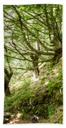 two little brothers Chasing Fairies in theBeech Forest on a summer day Bath Towel