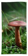 Two Mushrooms Bath Towel
