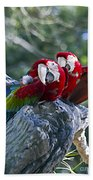 Two On A Branch Two Bath Towel