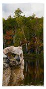 Two Owlets At A Lakeshore Bath Towel