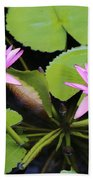 Two Pink Water Lilies Bath Towel