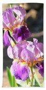 Two Purple Irises Bath Towel