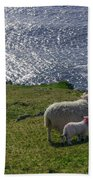 Two Sheep On The Cliffs At Sleive League - Donegal Ireland Bath Towel