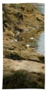 Two Spotted Sandpipers On The Flint Rivers Banks Bath Towel