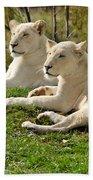 Two White Lions Bath Towel