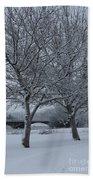 Two Winter Trees Bath Towel