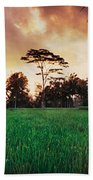 Ubud Rice Fields Bath Towel