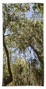 Under The Canopy - The Magical And Mysterious Trees Of The Los Osos Oak Reserve Bath Towel