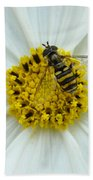 Up Close With The Bee And The Cosmo Bath Towel